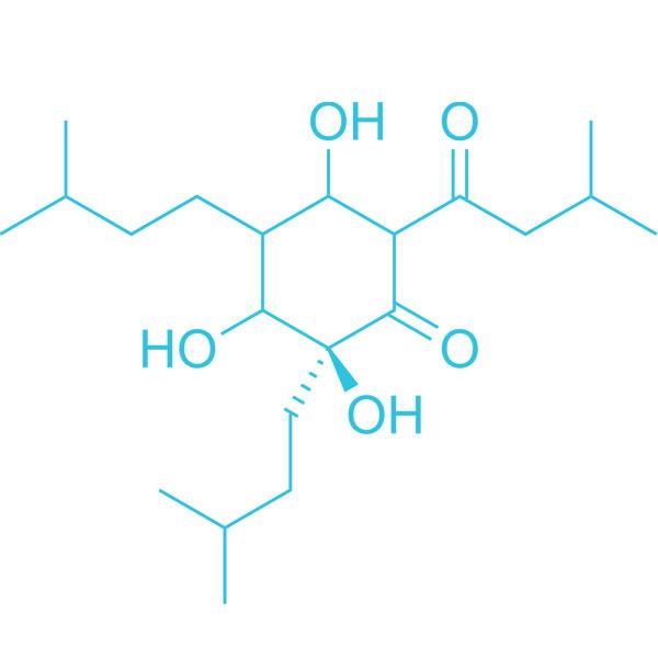 Humulus Molecule