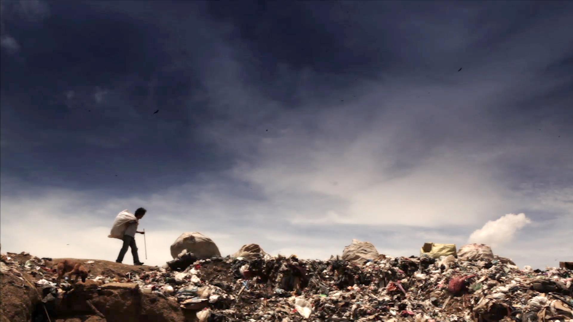 Scavenger walking through the dump.