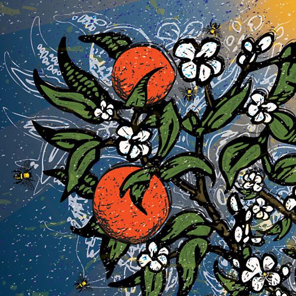 Soak Up the Sun Detail - Oranges