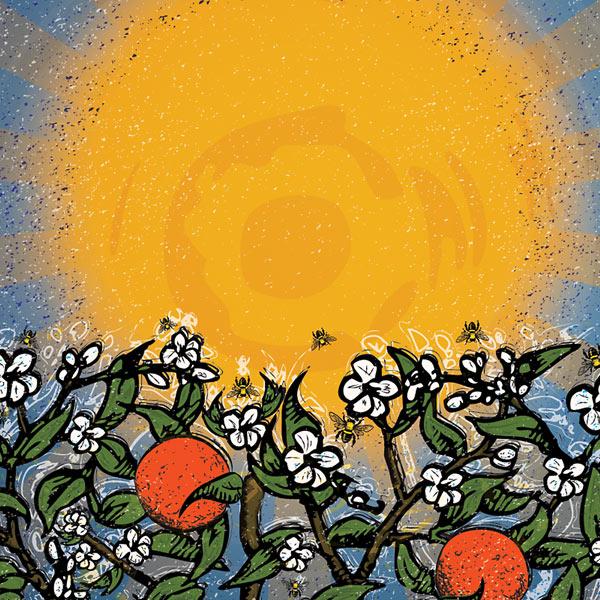 Soak Up the Sun Detail - Sun